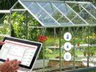 ساخت گلخانهای هوشمند با فناوری اینترنت اشیاء با کاهش ۹۵ درصد مصرف آب