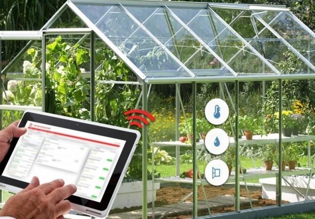 ساخت گلخانهای هوشمند با فناوری اینترنت اشیاء با کاهش 95 درصد مصرف آب